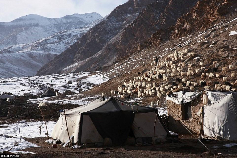 Nhiếp ảnh gia Cat Vinton đã dành hơn 2 tháng sống với một gia đình người Chang Tang-Pa ở biên giới Tây Tạng - Ấn Độ.
