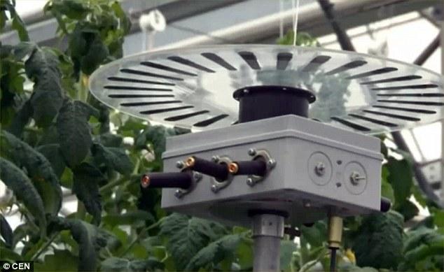Các nhà khoa học dự định sẽ sử dụng robot để làm việc thay cho con người.