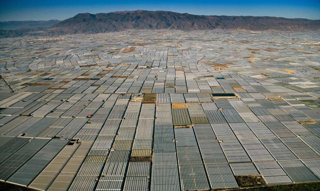 Đây là một thung lũng cực kỳ rộng lớn phủ kín bởi nhà kính tại Tây Ban Nha