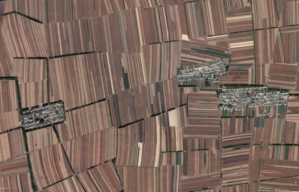 Những cánh đồng tại Trung Quốc, nơi mà thiên nhiên không còn chỗ trú ngụ