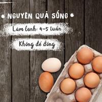 Thời hạn và cách bảo quản trứng, sữa