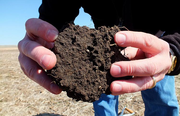 Đất có khả năng cô lập carbon, làm giảm phát thải khí nhà kính.
