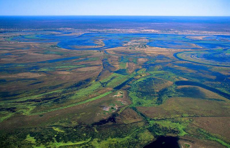 Đồng cỏ Okavango là một khu vực đồng bằng lớn với diện tích 7.770 km vuông