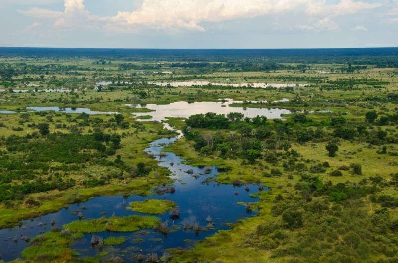 Okavango nổi bật với sa mạc Kalahari - cát cứng, khô cằn
