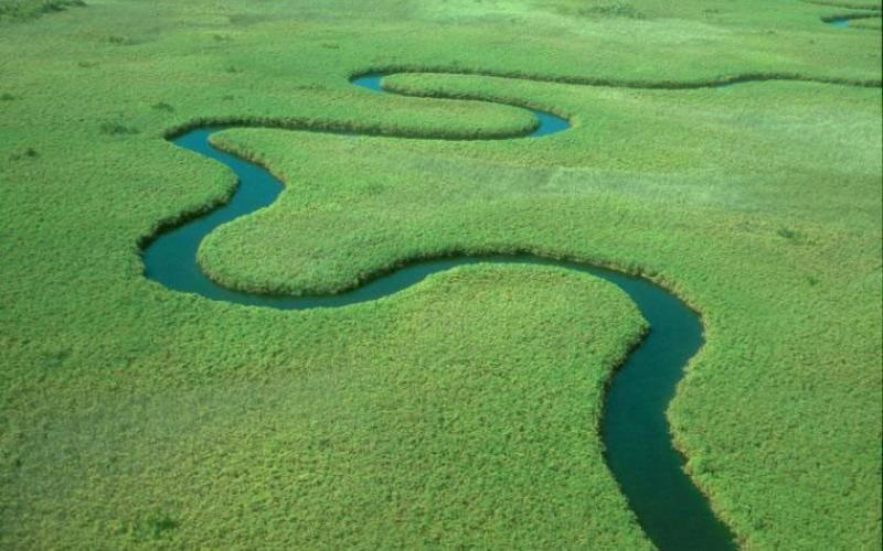 Những đầm nước xanh trong hiền hòa, những dòng sông uốn khúc với các loài thực vật phong phú