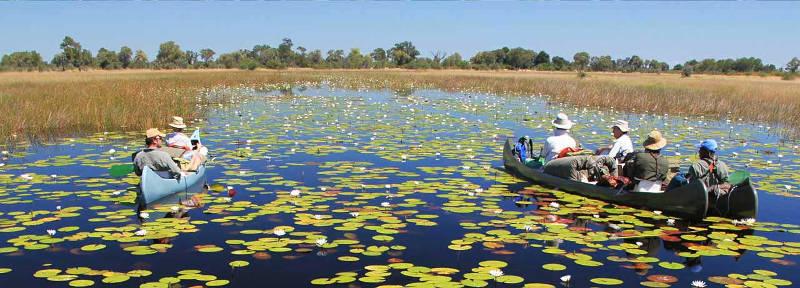 Với cảnh sắc thiên nhiên tuyệt đẹp và số lượng động thực vật đa dạng, vùng đồng bằng Okavango trở thành điểm đến rất thu hút du khách ở Botswana