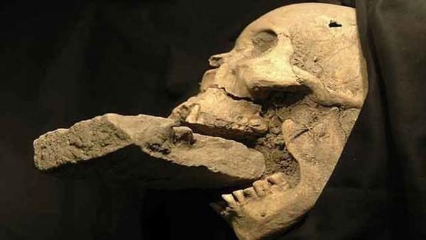 """Hộp sọ của """"ma cà rồng"""" bị nhét gạch vào mồm."""