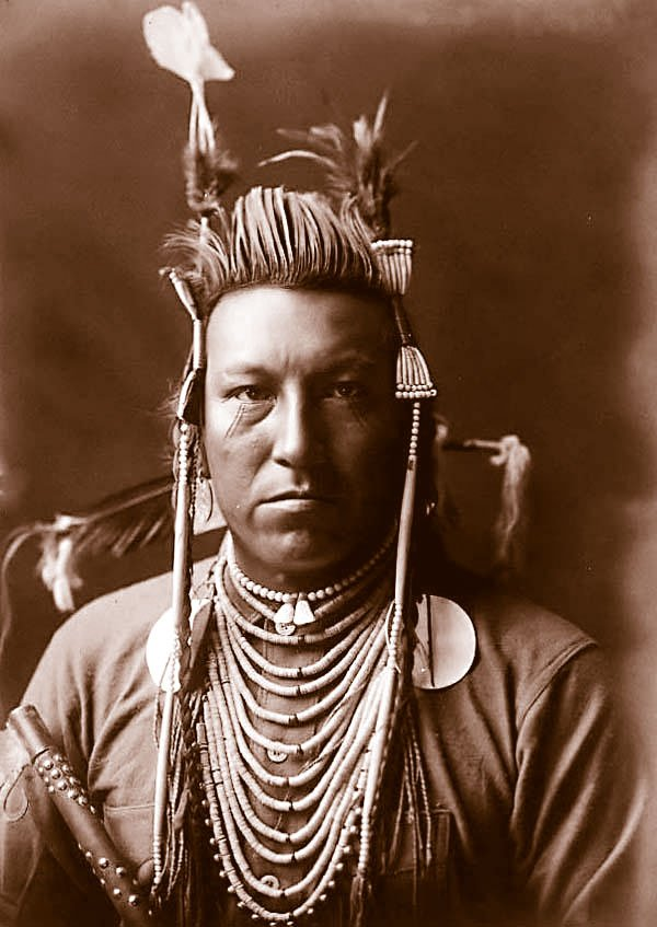 Một thổ dân thuộc bộ tộc da đỏ Crow do Edward S. Curtis chụp năm 1908.