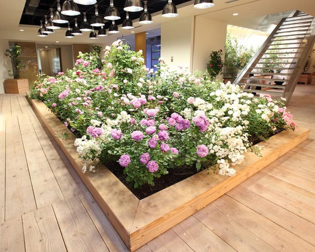 Ngoài thực phẩm, trong nhà cũng trồng hoa và thay đổi theo mùa.