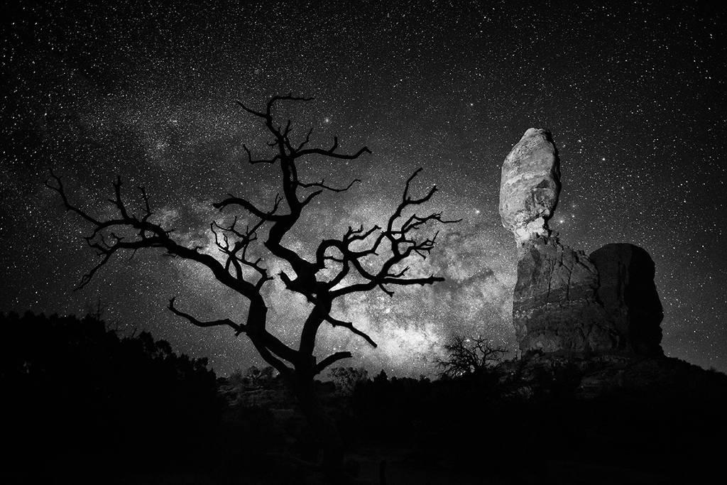 Khối đá thăng bằng Balanced Rock và cây trụi lá nổi bật trên nền trời đêm trong vườn quốc gia Arches, bang Utah, Mỹ.