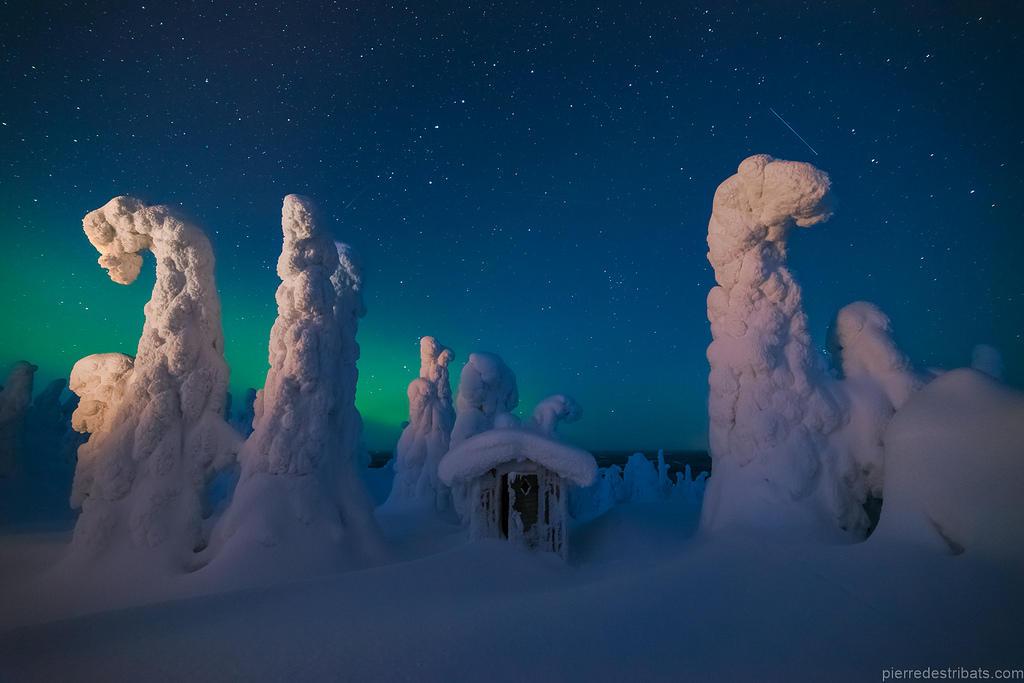 Ngôi nhà gỗ và cây xung quanh bị phủ trắng bởi tuyết tương phản với ánh sáng cực quang phía xa ở Lapland, Phần Lan.