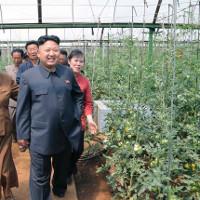 Hình ảnh hiếm về nền nông nghiệp ở Triều Tiên