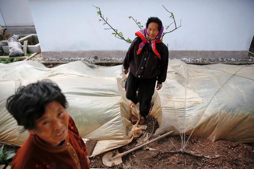 Nông dân làm việc trên một cánh đồng ở ngoại ô Bình Nhưỡng trong mùa đông.