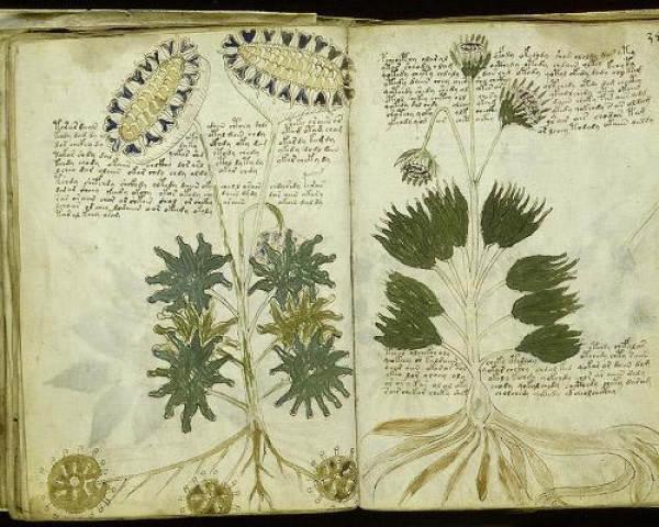 Cuốn sách có niên đại vào đầu những năm 1400