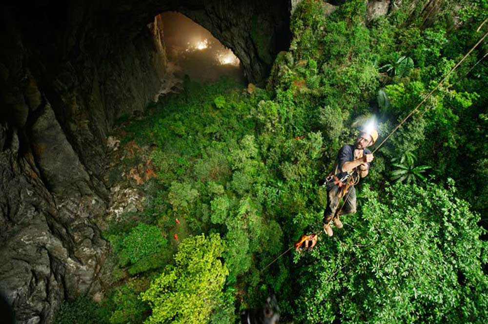 Trần hang có hai hố sụt lớn, giúp ánh sáng mặt trời và nước mưa lọt qua, tạo ra một khu rừng với hệ động thực vật độc đáo.