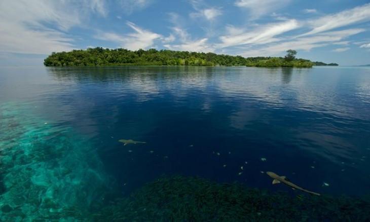 Đa số các hòn đảo tại Solomon đều nằm dưới thấp và dễ bị ngập khi nước biển dâng.