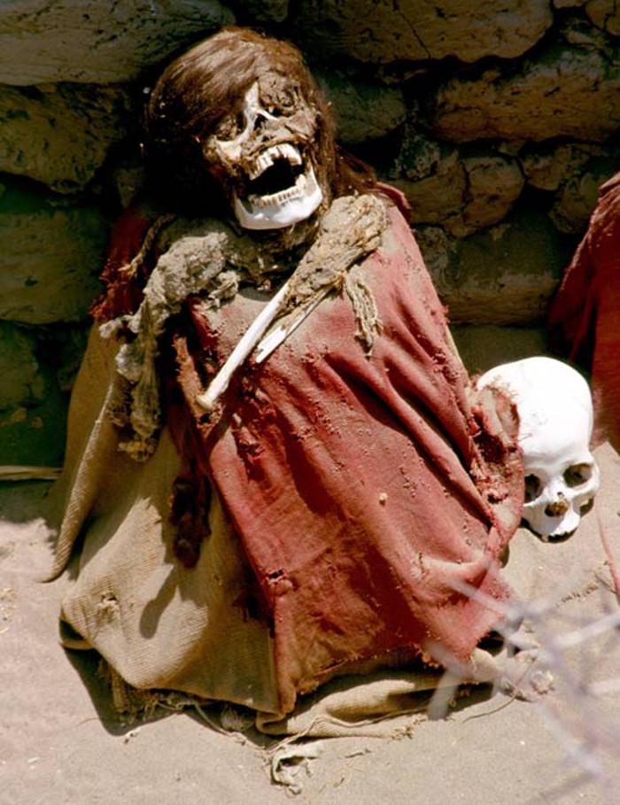 Những bộ hài cốt khô khốc, trắng hếu được đặt trong các hố và ở tư thế ngồi dựa lưng.
