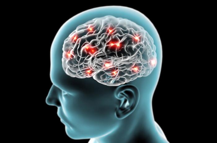Với phản trí nhớ, não bộ con người mới có thể giữ được trạng thái cân bằng, không bị bệnh.