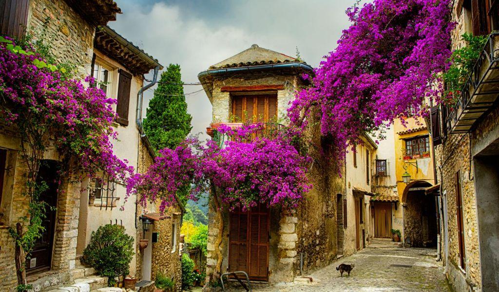 Một ngôi làng ở thị trấn Provence, Pháp