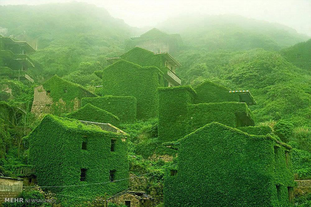 Làng chày bỏ hoang Shengsi, Trung Quốc