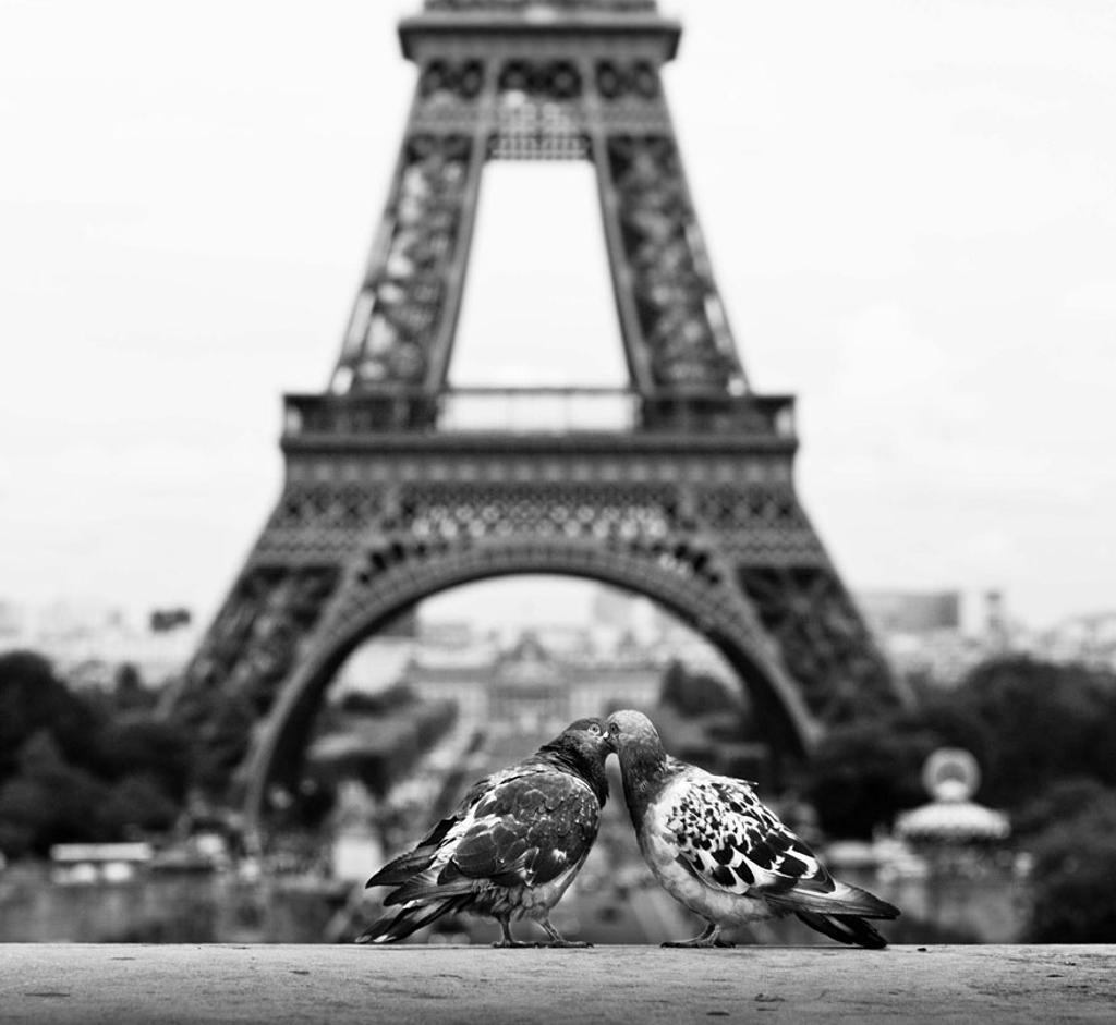 Paris – thành phố của tình yêu