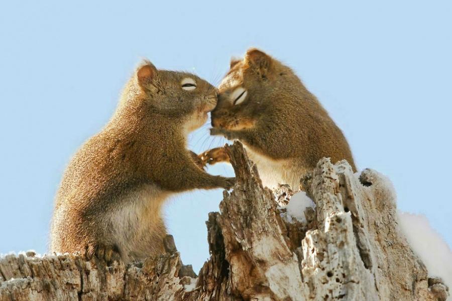 Dành cho nhau những hành động yêu thương