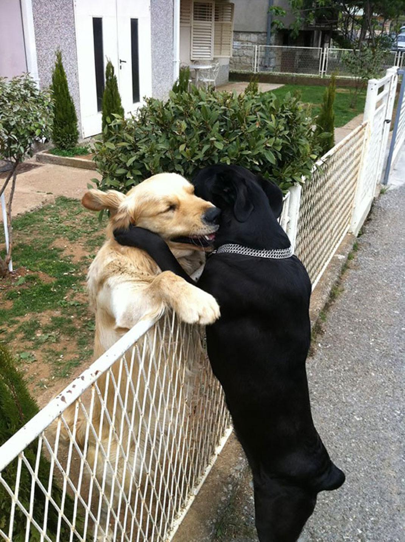 Tình yêu mãnh liệt sánh ngang với Romeo và Juliet.