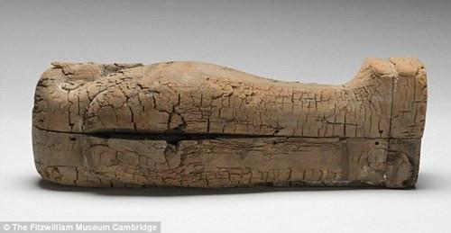 Chiếc quan tài được làm từ gỗ tuyết tùng và chỉ dài 44cm.