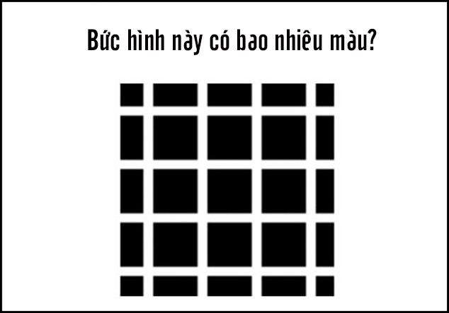 Bức hình này có chắc chỉ có 2 màu đen và trắng?