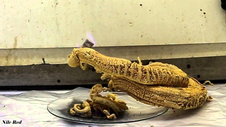 Kết quả sau khi đốt cháy Mercury(II) thiocyanate.