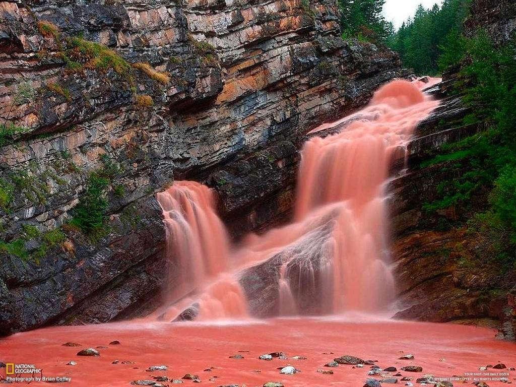 Nước biến thành màu hồng tuyệt đẹp.
