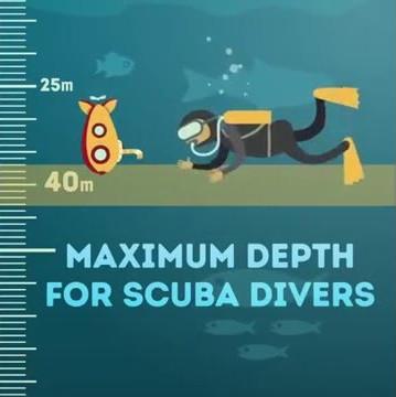 Đại dương chiếm khoảng 2/3 diện tích bề mặt Trái Đất.