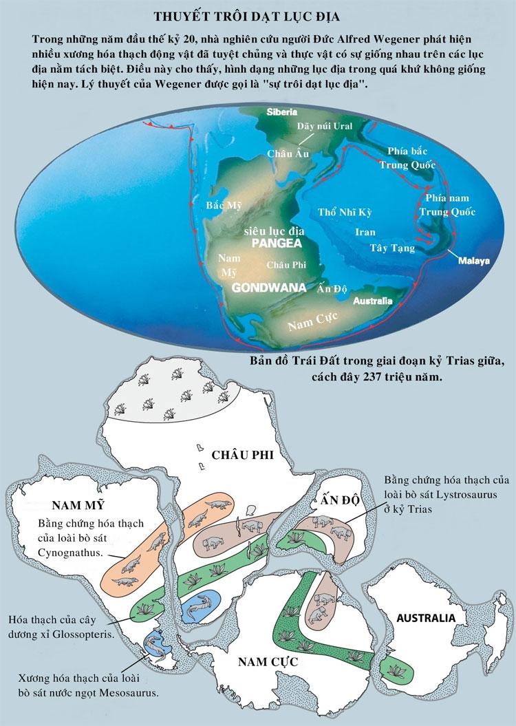 Hình dạng của những lục địa trong quá khứ khoog giống với hiện nay.
