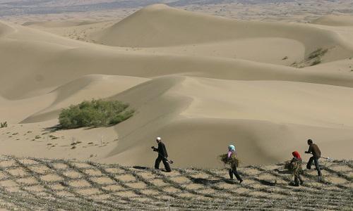 Nông dân chuẩn bị trồng cây để giữ ổn định các cồn cát ở rìa sa mạc Mu Us ở Linh Vũ, khu tự trị Hồi Ninh Hạ phía tây bắc Trung Quốc năm 2007
