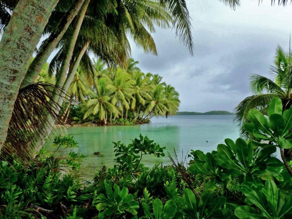 Đảo Palmyra Atoll