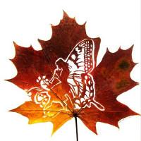 Chiêm ngưỡng tuyệt tác tinh tế từ những chiếc lá khô