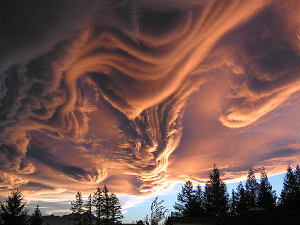 Đây là mây Undulatus asperatus