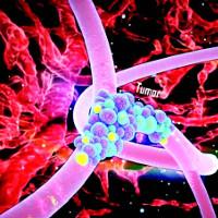 Thuốc điều trị ung thư dạng hướng đích của Việt Nam