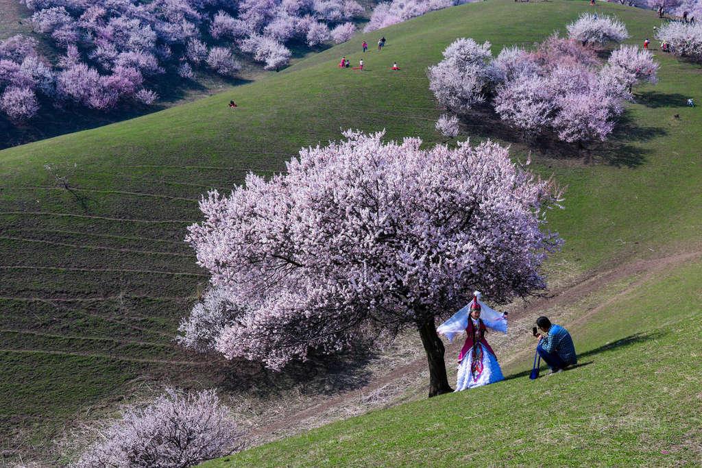 Khi ngắm nhìn cảnh đồi núi chập chùng, những cánh hoa đầy thi vị, hãy hít thở thật sâu và để tâm hồn được thư thái giữa mùi hương tươi mới của hoa lá, cỏ cây.