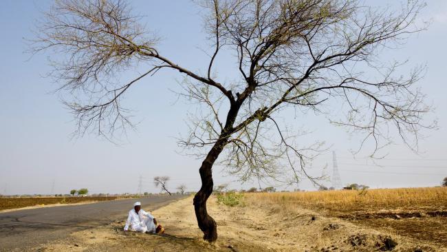 Người dân Ấn Độ đang khổ sở với cái nóng lên tới hơn 50 độ C.