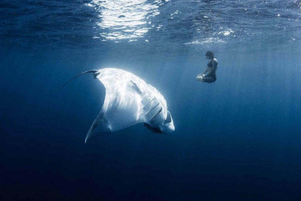 Sự hòa quyện kì diệu giữa thiên nhiên và con người.
