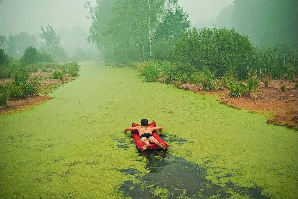 Bơi vào xứ sở màu xanh.