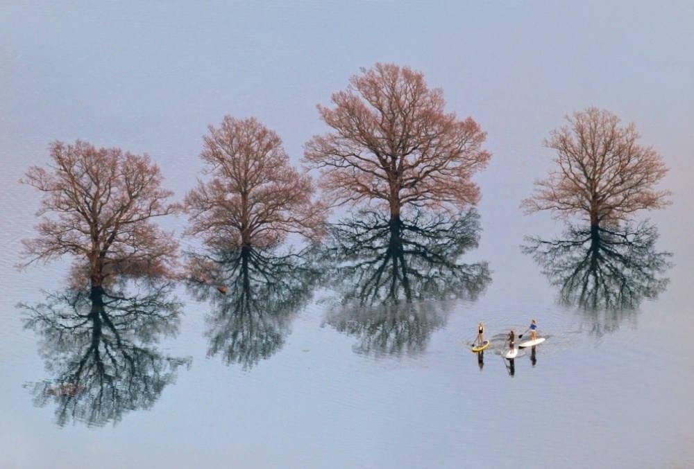 Bạn sẽ nghĩ rằng hồ nước này thật tuyệt với những cây lớn mọc lên từ mặt nước. Sự thật là đây không phải cái hồ nào cả mà là thủ đô Ljubljana của Slovenia trong một trận lụt lịch sử.