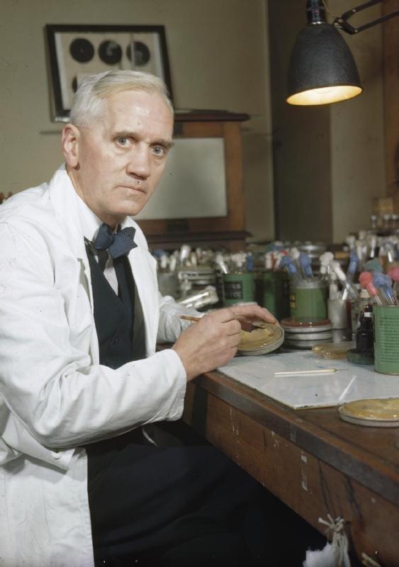 Đến 80% thuốc kháng sinh tại Mỹ bán ra là dành cho động vật nông trại.