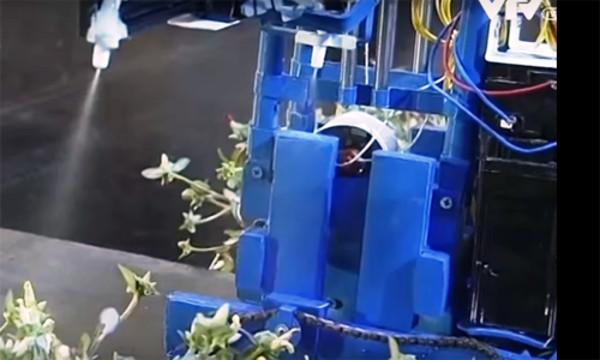 Máy phun thuốc trừ sâu tự động có thể thay con người làm công việc độc hại. Dù mới là dạng máy bán tự động nhưng chiếc máy hoạt động khá trơn tru.