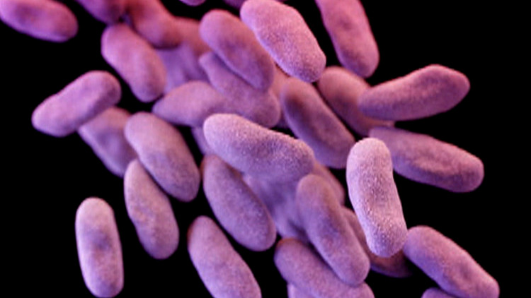 """Việc sử dụng kháng sinh quá mức đã dẫn tới """"siêu vi khuẩn"""" kháng thuốc ngày càng tăng cao."""