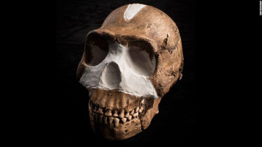 Người Homo naledi