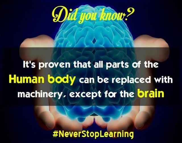 Tất cả các bộ phận trong cơ thể con người đều có thể được thay thế bằng máy móc, ngoại trừ bộ não.