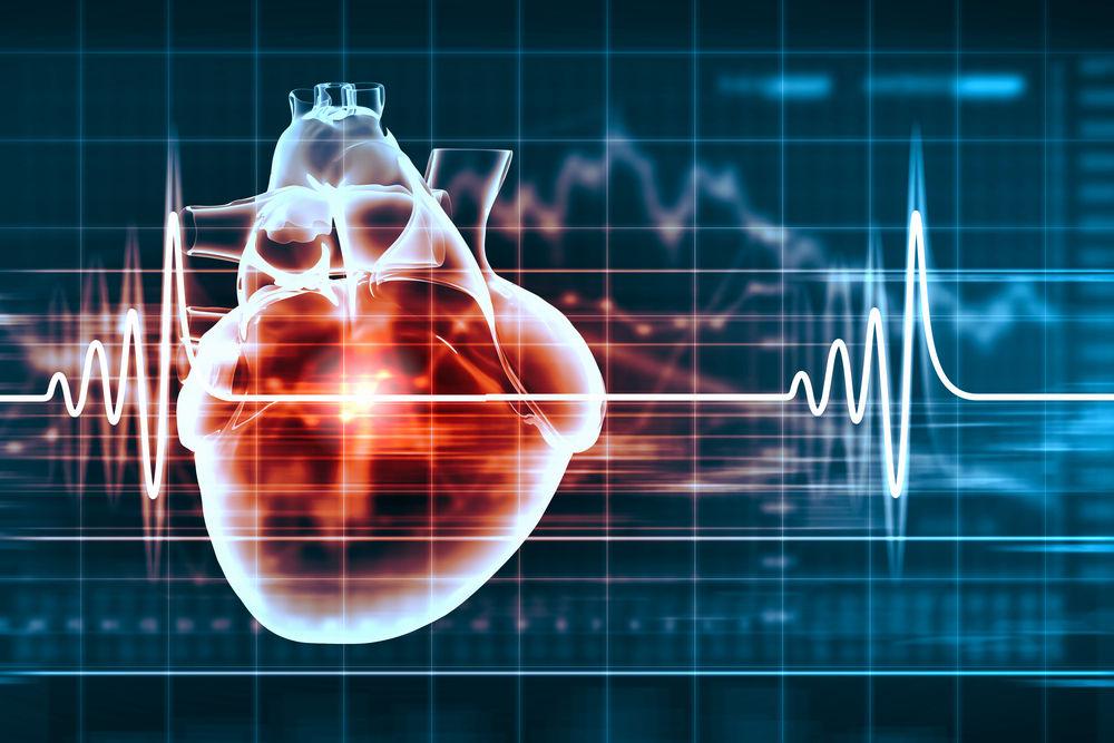Quả tim tự sản sinh xung điện cho riêng mình, tạo ra nhịp đập.