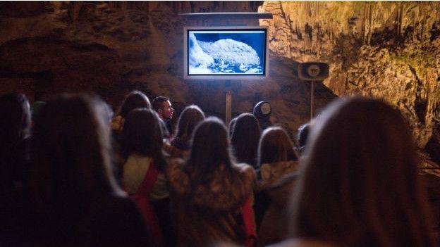 Do sinh sống trong hang, manh giông phát triển một số kỹ năng săn mồi vô cùng hiệu quả. Thay cho thị giác, loài vật sở hữu thụ thể cảm giác vô cùng tinh nhạy về mặt khứu giác và vận động, giúp nó săn con mồi như cua và ốc sên trong bóng tối.